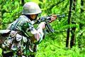 Civilians, BSF jawans hurt in ceasefire violation by Pak in Poonch