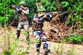 BSF scuttles infiltration bid in Jammu sector, kills 7 Pak Rangers