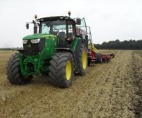 United Kingdom - Oilseed rape market seeks growers: any volunteers?