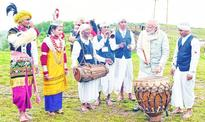 PM visits grove, revels in tradition