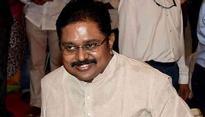 Trouble for TN CM? Out on bail, Dinakaran takes 10 MLAs to meet Sasikala