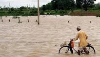 Andhra Pradesh: Water level in River Godavari rising alarmingly