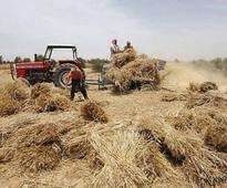 Govt asked to take note of wheat growers' miseries: Mian Zahid Hussain