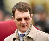 Ballydoyle bidding to Reel in more Hong Kong riches