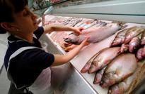 Mitsubishi bets on salmon with $1.4 billion bid for Norway's Cermaq