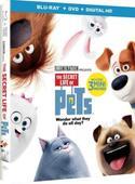 SECRET LIFE OF PETS Coming to Digital HD, Blu-ray/DVD & On Demand This Holiday Season