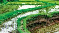 DNA EXCLUSIVE: US, Spain, Argentina keen to invest in agriculture