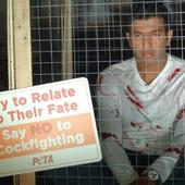 Tennis star Rohan Bopanna poses inside a cage for PETA campaign