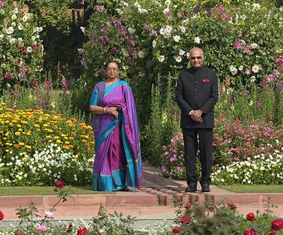 10,000 Tulips, 135 types of roses... Welcome to the Mughal Gardens