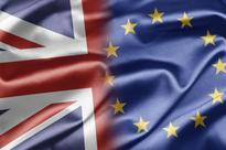 Financial panic, petitions, insults and humour mark Brexit vote's immediate aftermath