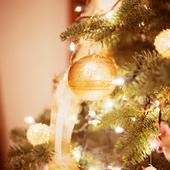 November 2016 Grayslake Tree Lighting Festival and Holiday Market