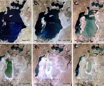 Forest service helps restore Aral Sea
