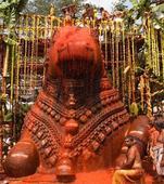 Smeared with colours, Nandi idol comes alive at Mahabhisheka fete