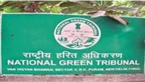 NGT directs AAP govt to immediately devise mechanism to deal