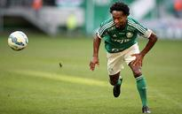 Former Brazil midfielder Ze Roberto will retire at the end of 2016