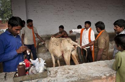Unfair to link gau rakshaks to BJP: Gadkari