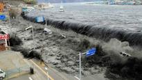 Novel mechanism may stop tsunamis in their tracks
