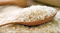Chinese man gets 10 years in jail in US for trying steal proprietary rice seeds and pass them off to visitors