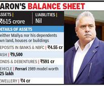 Vijay Mallya Claimed Just Rs 9,500 In Hand And No Liabilities In His 2010 Election Affidavit!