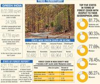 India's forest cover up by 1% over last 3 years