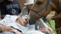 Veteran says goodbye to beloved horses