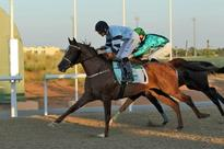 Sheikh Mansour Bin Zayed Al Nahyan Sends Out Three Winners on Al Ain National Day Card