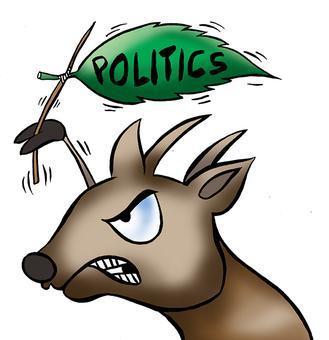 The politics of vegetarianism