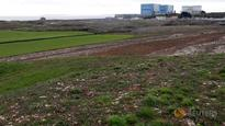 EDF delays Hinkley Point decision to consult works council: sources