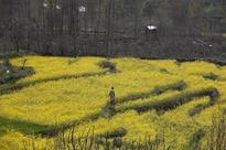 India nearly doubles budget for digitisation of land records