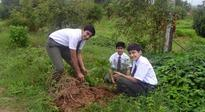 An endeavour to keep the environment clean