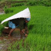 Ready with contingency plan to deal with poor monsoon, assures Centre