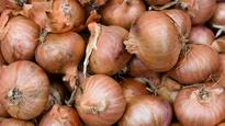 Nashik: Farmer gets only 5 paise per kg for onions!