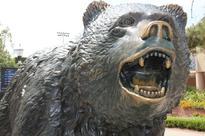 Times Higher Education global reputation survey places UCLA No. 2 among U.S. public universities
