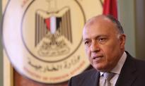 Egypt's FM holds talks with African counterparts at Rwanda summit