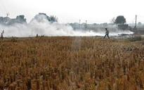 As Delhi gasps for air, Punjab's finance minister suggests ways to check stubble burning