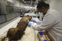 2,000-Year-Old Egyptian Mummy Paintings Reveal Clues To Modern Portraits, Scientists Say