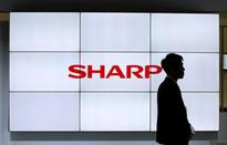 Sharp says expects significant profit improvement, shares surge