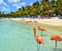 Fly from Boston to exotic Aruba for just $266!