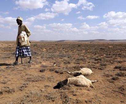 El Nino casts a shadow on 2017 monsoon