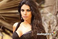 Finally! Sherlyn Chopra's Mollywood debut to hit the big screens