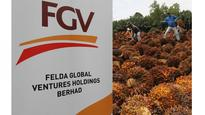 FGV hopes for rethink on levy increase for foreign...