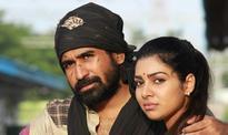 Bichagadu total box office collection: Vijay Antony's Telugu film turns bigger success than Pichaikkaran