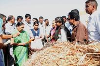 Gujarat CM visits scarcity-hit remote area of Kutch, reviews relief works