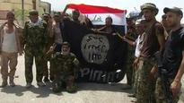 Last pocket of resistance 'crushed in Falluja'