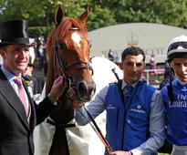 Godolphin trainer Charlie Appleby International Trainer of the Year