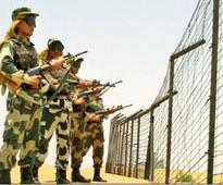 Haryana govt releases Rs 20 lakh grant for BSF trooper's family