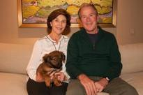Bush family announces adoption of rescue puppy named Freddy