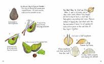 'Mi Comida Latina': A Hand-Drawn Guide To Latin Cuisines