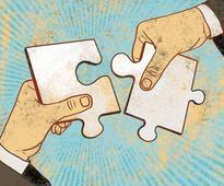 LIC, Aberdeen hold key to Nuvo-Grasim merger