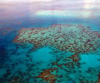 Great Barrier Reef Not Included In New UN Climate Change Report: Here's Why